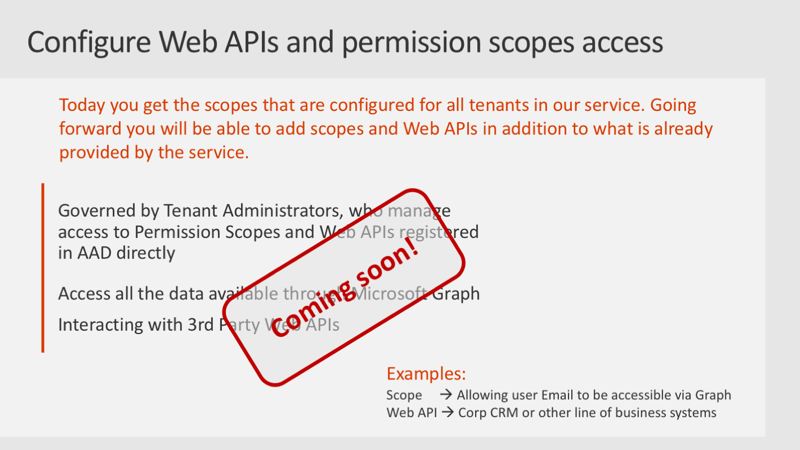 Slide: Configure Web APIs & permission scopes access